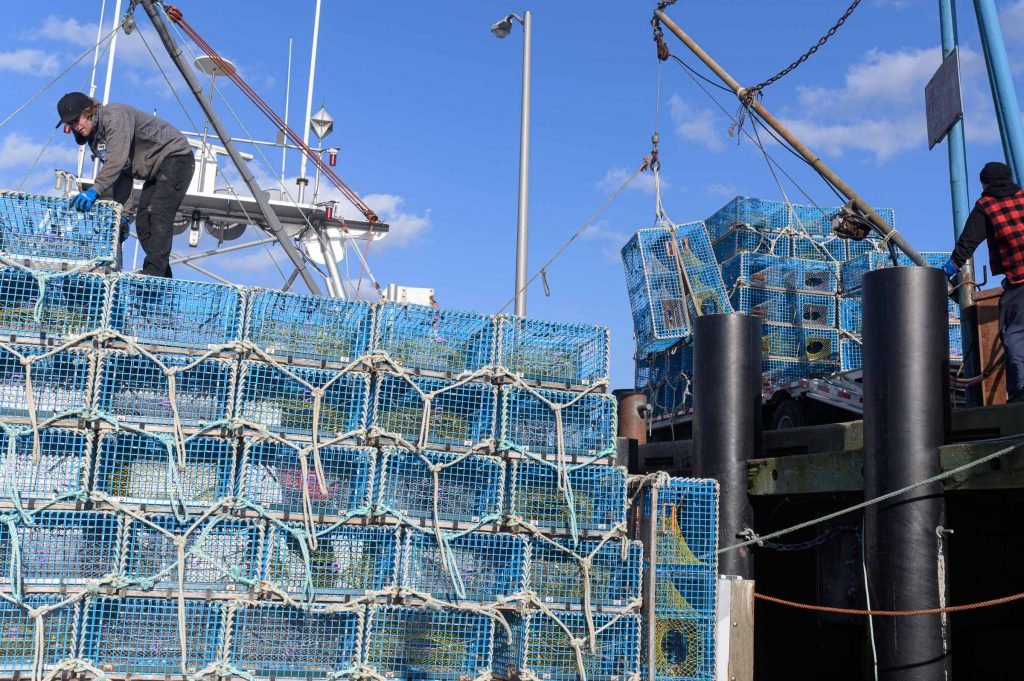 Fishers loading lobster traps onto a boat ahead of the season