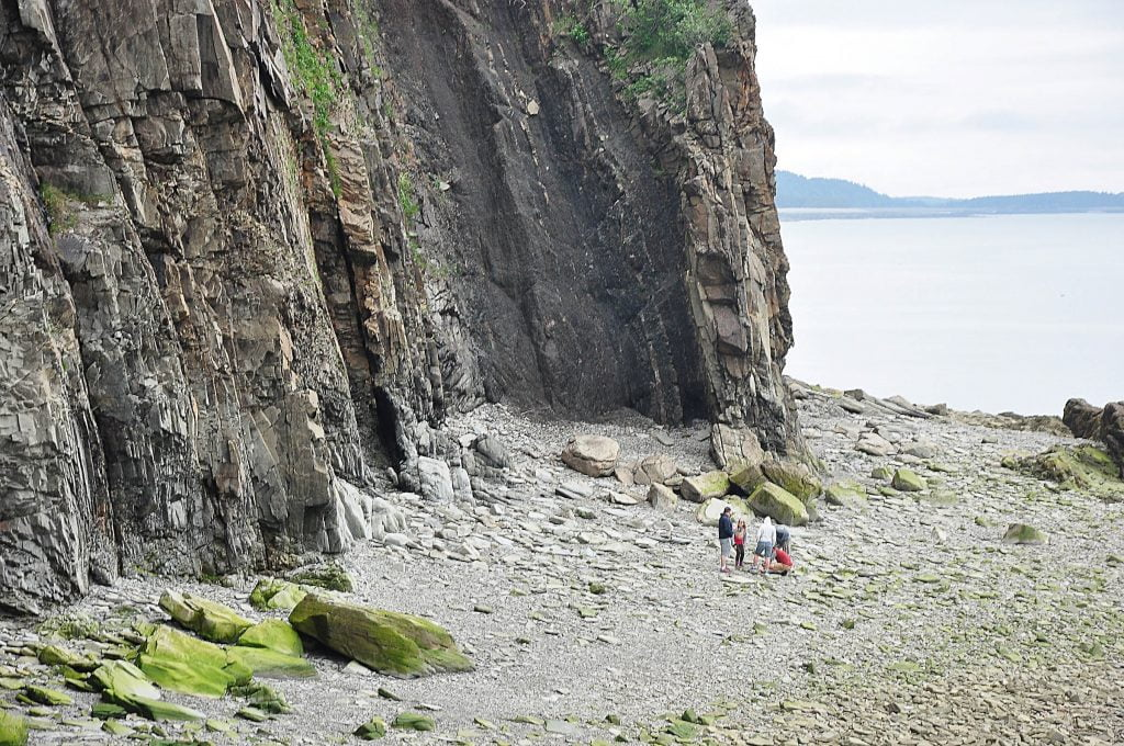 Cliffs at Cape Enrage