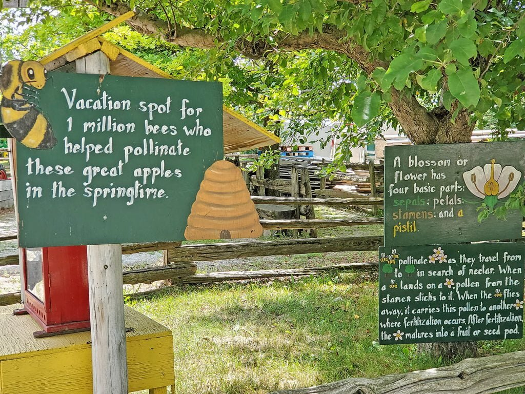 Signage about Bees