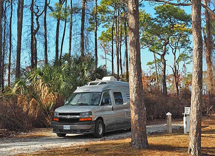 RV between tall trees