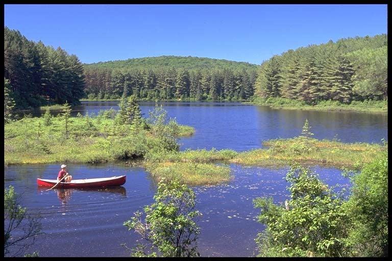 Man canoeing on Pog Lake