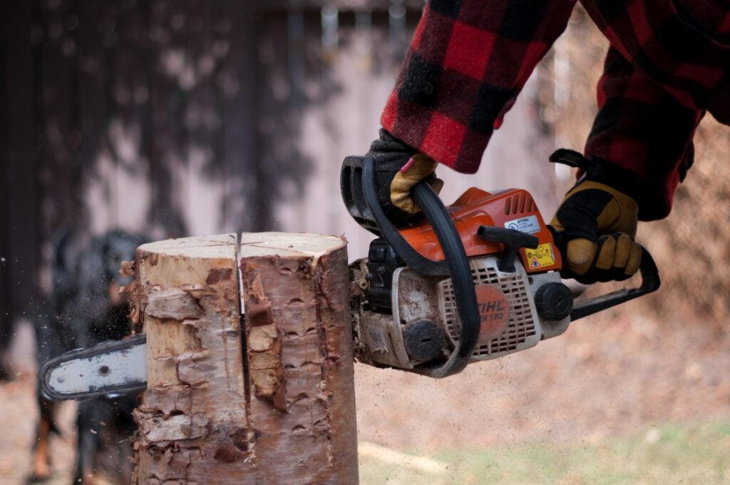 Chainsaw cutting three intersecting cuts in a Swedish log