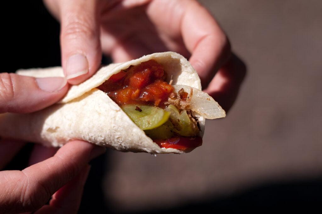 Carnita filling in a tortilla wrap